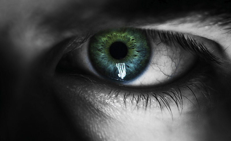 eye showing how important vision is
